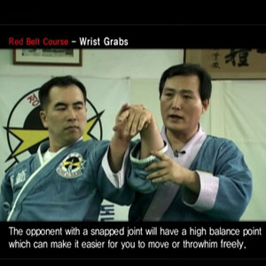 "Korea Traditional Martial Arts DVD ""The Original Hapkido""  정통합기도DVD교본"